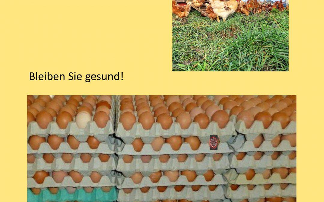 Frohe Ostern! Bleiben Sie gesund. fwg-Ennigerloh e.V.